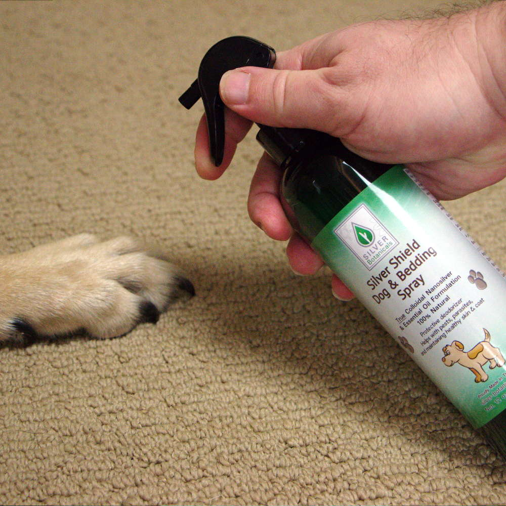 Silver Shield Dog & Bedding Spray for your dog's paws