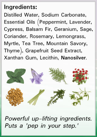 Silver Foot Shield Ingredients